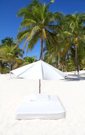 parasol beach tropical umbrella mattress with palm trees photo