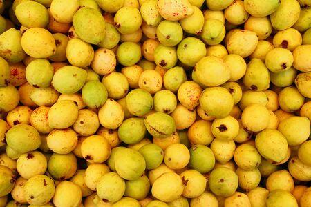 guayabo: fruta deliciosa guayaba amarillo maduro de M�xico
