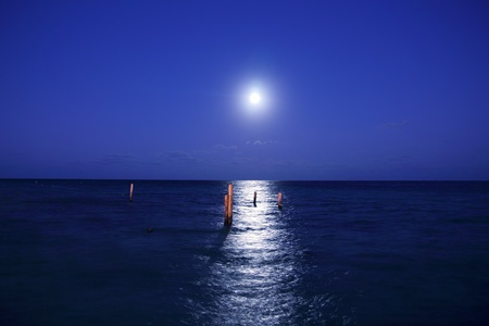 caribbean moon night sea with reflection scenic Stock Photo - 8926681