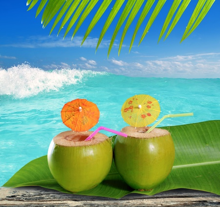 fresh tender green coconuts straw cocktails on tropical caribbean beach