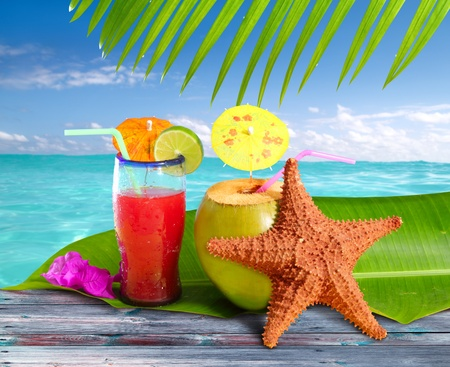 coconuts cocktails straw tropical caribbean beach with starfish Stock Photo