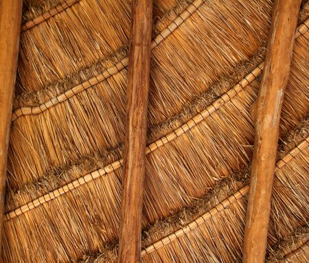 Palapa Tropical Mexico Wood Cabin Roof Detail Indoor Stock Photo   9030963