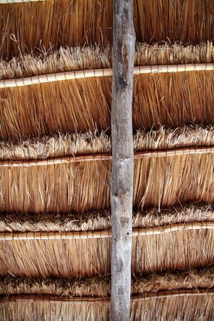 sun roof: Hut palapa traditional cabin sun roof wiev from above Mexico architecture