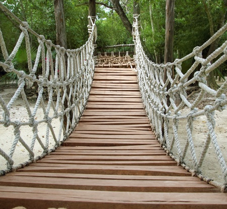 rope bridge: Adventure wooden rope suspension bridge in jungle rainforest