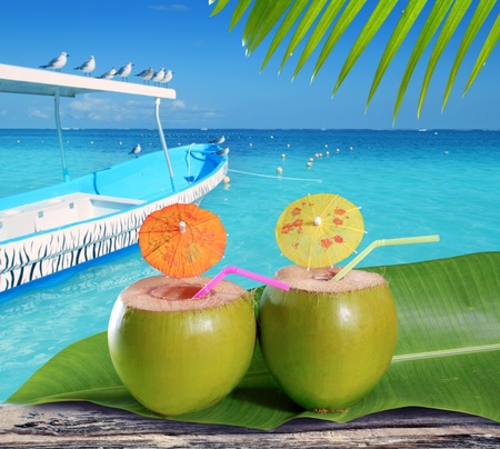 coconuts straw cocktails in tropical caribbean turquoise beach with boat