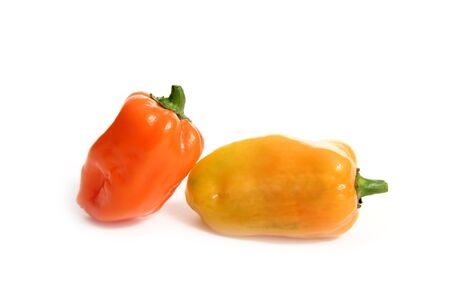 hottest: Habanero Capsicum chili hottest pepper in the world from Mexico