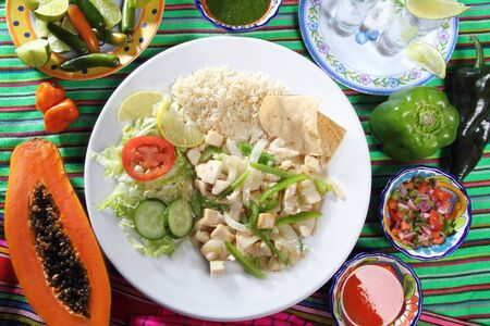 chicken mojo de ajo garlic sauce mexican chili sauces papaya and tequila Stock Photo - 9227207