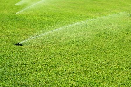 grass garden spring sprinkle  water in a row Stock Photo - 9227232