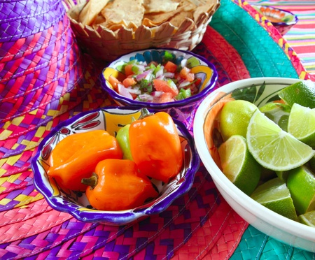 Mexican sauces pico de gallo habanero chili sauce Mexico spices Stock Photo - 9227201
