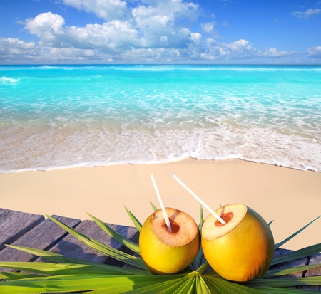 Caribbean paradise beach coconuts cocktail palm trees photo