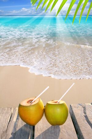 caribbean drink: Caribbean paradise beach coconuts cocktail palm trees
