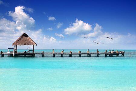 turquesa: Muelle de cabina del Caribe playa tropical México de Isla Contoy