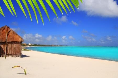 palapa: Caribbean palapa front tropical beach Mayan Riviera Mexico