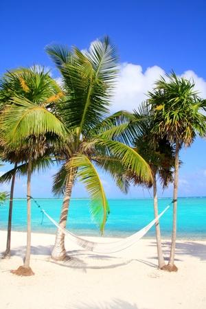 palm beach: Caribbean sea with swing hammock turquoise beach Mayan Rivera Stock Photo