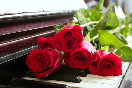 classic red roses on piano vintage romantic valentines day photo
