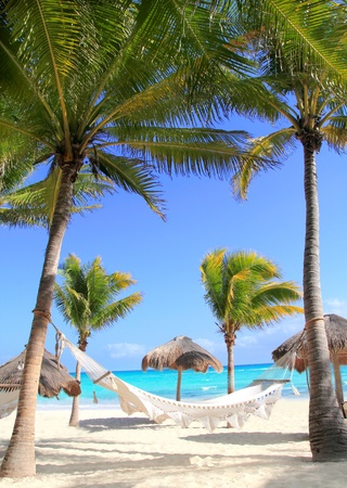 Caribbean beach hammock and palm trees in Mayan Riviera Mexico photo