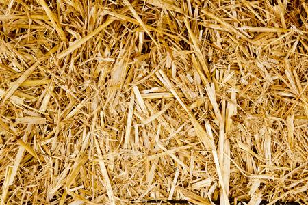 Gouden baal stro textuur herkauwers dierlijke voedsel achtergrond