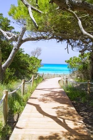 baleares: beach way to Illetas paradise beach Formentera Balearic islands