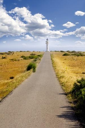 Barbaria berberia cape Formentera lighthouse golden meadow blue sky photo