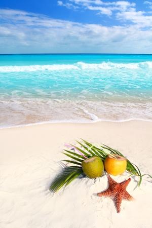 coconut cocktails juice and starfish in tropical aqua beach Caribbean photo