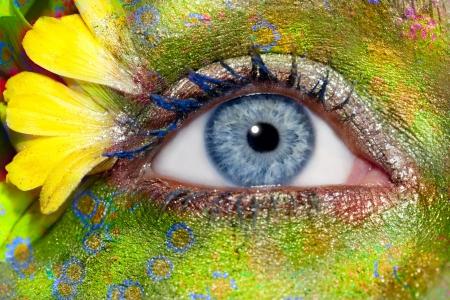 maquillage yeux: femme bleu yeux Maquillage printemps fleurs m�taphore fantastique color� pr� Banque d'images