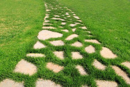 stone path in green grass garden texture vanishing perspective photo