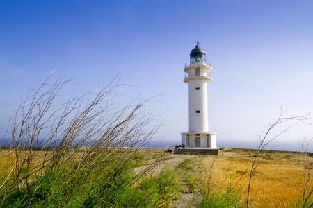 baleares: Barbaria berberia cape Formentera lighthouse golden meadow blue sky