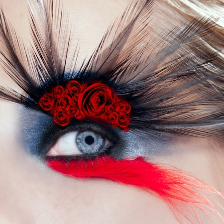 maquillaje de fantasia: d�a de la madres p�jaro negro mujer ojo maquillaje macro roja met�fora espa�ola Rosa