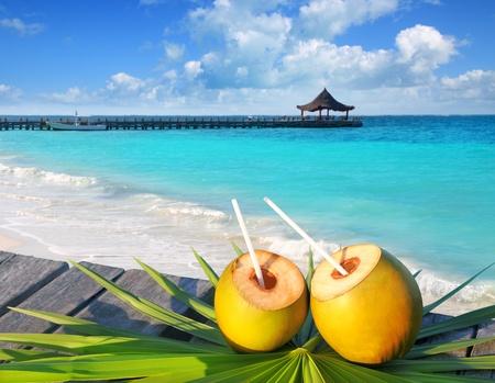 coctel de frutas: Cocos cócteles en una hoja de árbol de Palma en mar tropical del Caribe