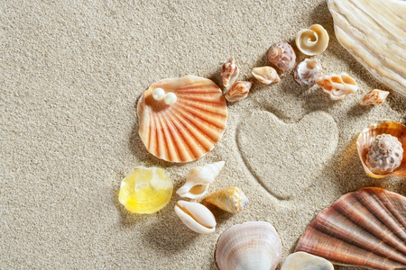 beach white sand with heart shape printed and shells such a summer vacation concept still life Stock Photo - 9941688
