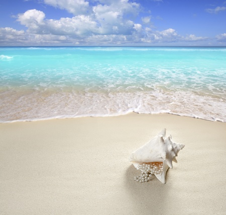 sandy: beach sand pearl necklace shell like a summer vacation symbol in turquoise caribbean sea