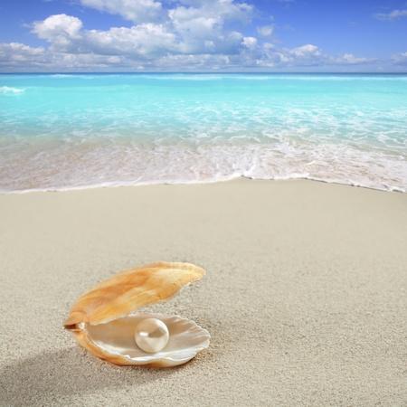 Caribbean pearl inside clam shell over white sand beach photo