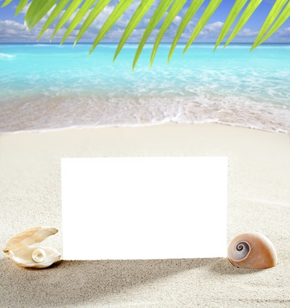 beach vacation concept blank paper in white sand beach with pearl shells and sea snail Stock Photo - 9941610