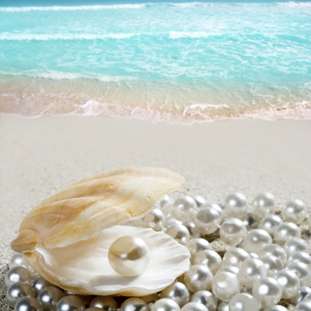 Caribbean pearl inside clam shell over white sand beach in a tropical turquoise sea photo