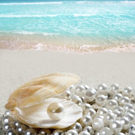 Karibische Perle in Clam-Shell über weißen Sandstrand in einem tropischen türkisfarbenen Meer