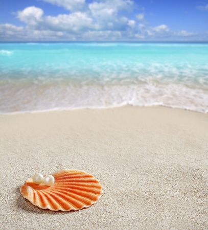 Caribbean pearl on shell over white sand beach of a tropical turquoise sea photo