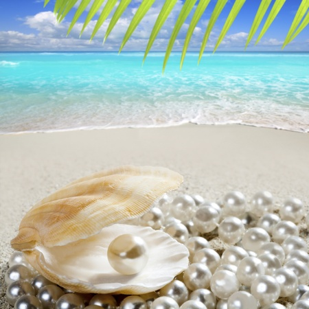 perlas: Perla caribe�a dentro de concha de almeja en la playa de arena en un mar turquesa tropical Foto de archivo