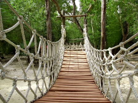 suspension bridgeof ropes and woods for a jungle adventure photo