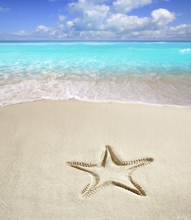 sandy beach: caribbean beach with starfish print on white sand such as a summer vacation symbol Stock Photo