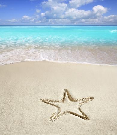 sandy: playa caribe�a con estrellas de mar imprimir en arena blanca como un s�mbolo de vacaciones de verano