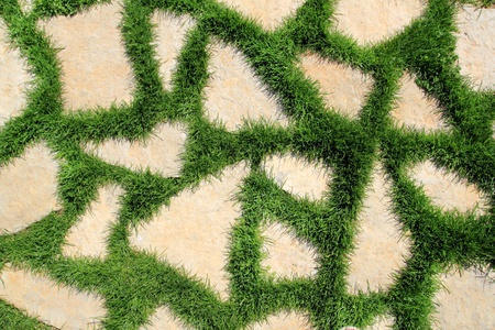 elevated view: stone path in green grass garden texture elevated view Stock Photo
