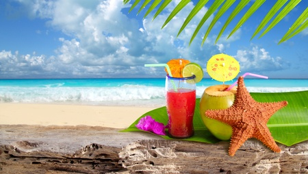 Coconut tropical cocktail with starfish over a Caribbean beach rock