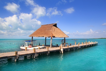 palapa: Contoy island nature reserve in Mexico wood pier with palapa