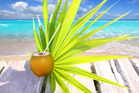 chit: fresh coconut in caribbean sea wood pier tropical topic with chit palm leaf Stock Photo