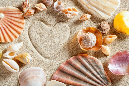 beach white sand with heart shape printed and shells such a summer vacation concept still life Stock Photo - 10214534