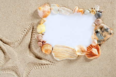 border frame with summer beach shells and blank copy space paper photo