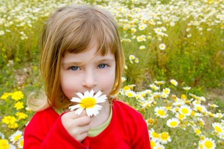 blond little girl smelling a daisy spring flower in meadow field photo