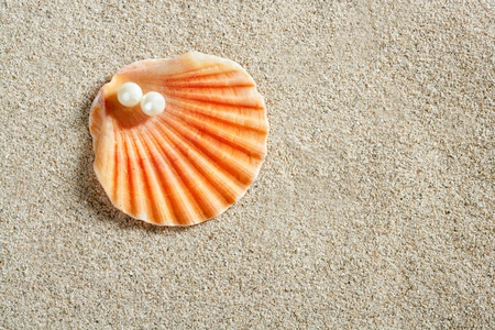 beach white sand with pearl in clam shell macro closeup