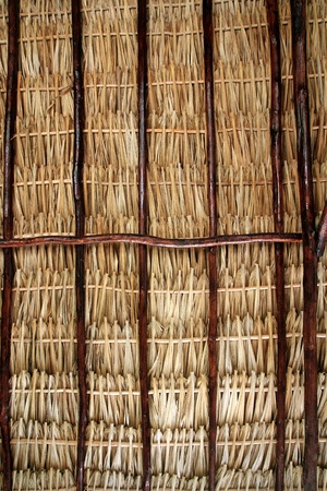 palapa: dried palm tree leaves palapa roof and beams view from under Stock Photo
