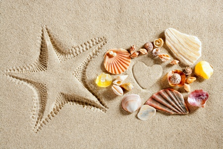 seashores: beach white sand heart shape and starfish printed and shells as summer vacation concept